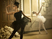 Two cute swans in ballet dance — Stock Photo