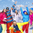 Panoramic photo of cheerful snowboarders — Photo