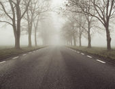 Picture presenting the foggy day — Stock Photo