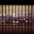 Night city behind the grating — Stock Photo #42585993