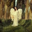 Wonderful female angel walking across the forest — Stock Photo #46740017