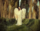 Wonderful female angel walking across the forest — Stockfoto