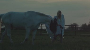 Woman with the horse — Stock Video