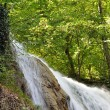 Stock Photo: Waterfall river in wood