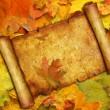 Vellum on background from maple leaves — Stockfoto #13087733