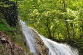 Waterfall river in wood — Stock Photo