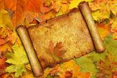Perkament op achtergrond van esdoorn bladeren — Stockfoto