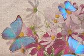 上花 grunge 的蝴蝶 — 图库照片