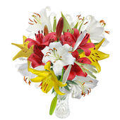 Bouquet lily — Stock Photo