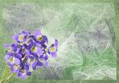 关于背景 grunge 紫 — 图库照片