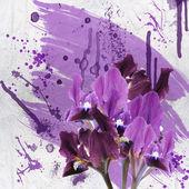 Iris grunge — Stock Photo