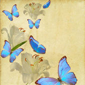 Butterfly and flowers grunge — Foto de Stock
