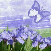 Blue iris and blue butterfly — Stock Photo