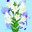 White lily on blue background — Stock Vector #22678819