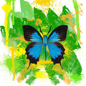 Blue butterfly on watercolor background — ストック写真