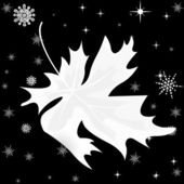 Autumn  leaf and snowflake on black background — Stock Vector