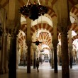 Mosque at night in Cordoba - Spain. Mezquita - Stock Photo