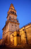 Mosque at night in Cordoba - Spain. Mezquita — Stock Photo
