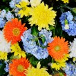 Nice flower bouquet — Stockfoto
