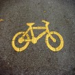 Bike lanes, Bicycle symbol — Stock Photo #21689833