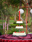 Wedding cake in the garden — Stock Photo