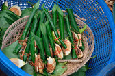 Areca nut, betel nut chewed with the leaf is mild stimulant for sell — Stock Photo