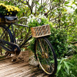 Stock Photo: Vintage bicycle with flower in basket