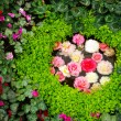 Flower decoration in garden — Stock Photo