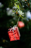 Red gift box hanging on christmas tree — Stock Photo