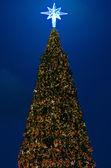 Christmas tree with lighting decorate — Stok fotoğraf