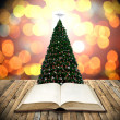 Read bible in christmas day — Stock Photo