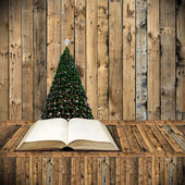 Read bible in Christmas day, Holiday concept — Stock Photo