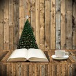 Stock Photo: Relax with book in Christmas day