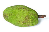 Jackfruit isolated — Stock Photo