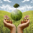 Stock Photo: Healing planet by plantation concept