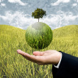 Stock Photo: Sustainable agriculture business concept