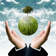 Stock Photo: Sustainable business for protect the earth concept