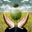 Stock Photo: Sustainable agriculture business for protect the earth concept