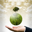 Green business care the earth concept — Stock Photo