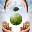 Help together for save the earth concept — Stock Photo #39796005