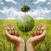 Save the world by plantation, Green and sustainable concept — Stock Photo