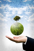 Care the world by green business concept — Stock Photo