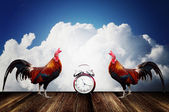 Wake up with rooster crows concept — Stock Photo