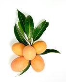 Exotic Thai Fruit, Marian plum — Stock Photo