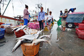 CHONBURI, THAILAND - AUGUST 17 : Unidentified people trading fish on August 17, 2013 in Sriracha, Chonburi, Thailand  — Stock Photo