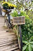 винтаж велосипедов с цветком в корзине — Стоковое фото