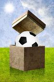 Fútbol en el cuadro abrir con fondo de campo — Foto de Stock