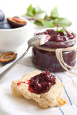 Sauce of plums with spic — Stock Photo