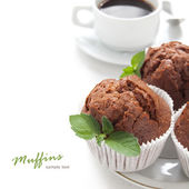 Chocolate muffin with fresh mint — Stock Photo