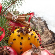 Christmas decoration with fruit — Stock Photo #14385687